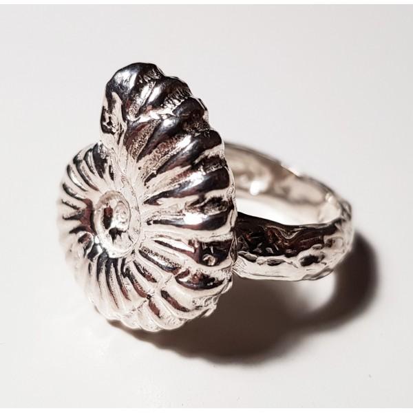 Anillo de plata ammonite